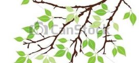 272x125 Black Branches Clipart, Tree Branch Silhouettes Clip Art, Bare