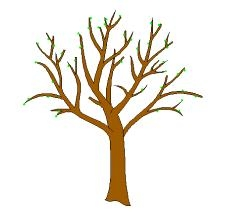 229x222 Tree Trunk With Branches Clipart