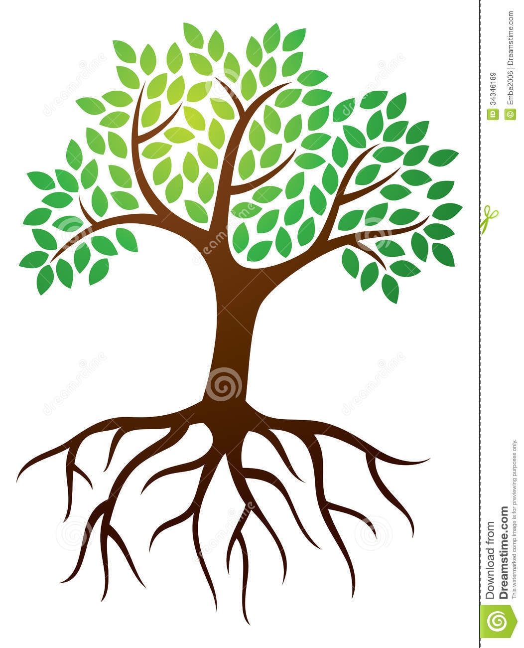 1052x1300 Branch Clipart Tree Root