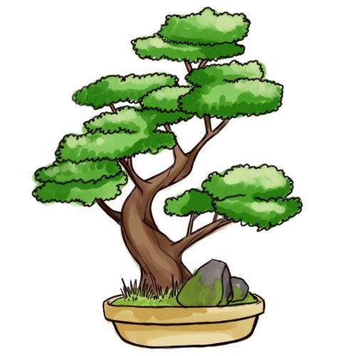 500x500 Draw a Bonsai Tree Drawings, Tree drawings and Simple drawings
