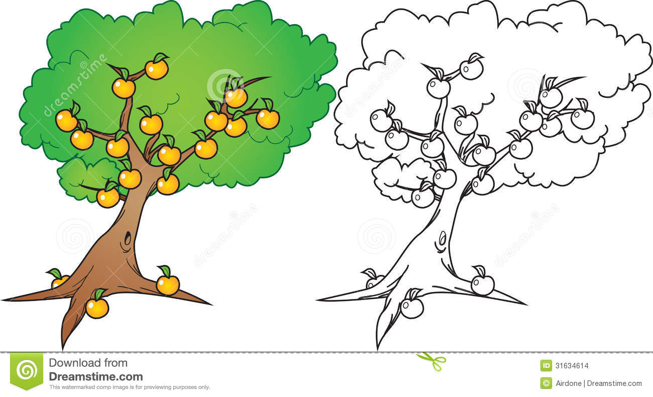 1300x790 Orange Tree Drawing Clipart Panda