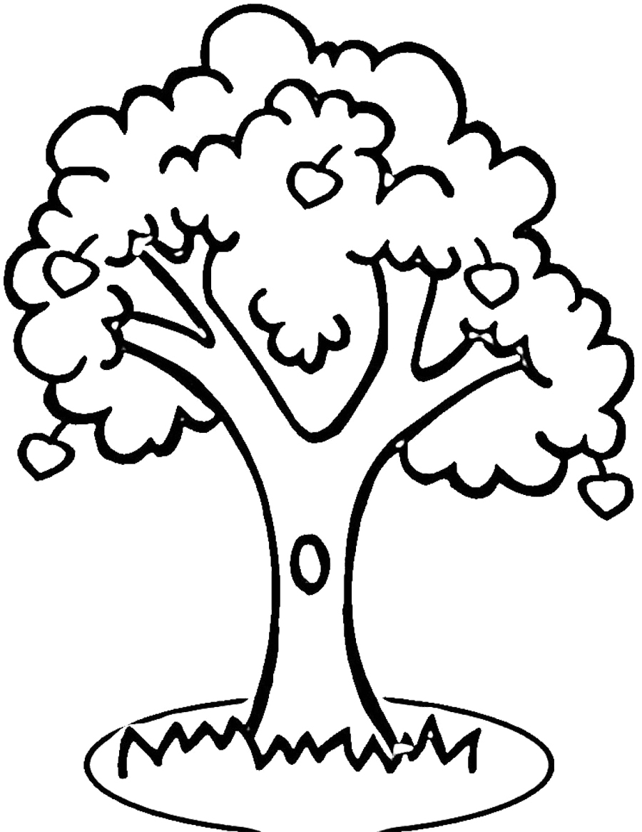 900x1165 Outline Of A Tree Drawing