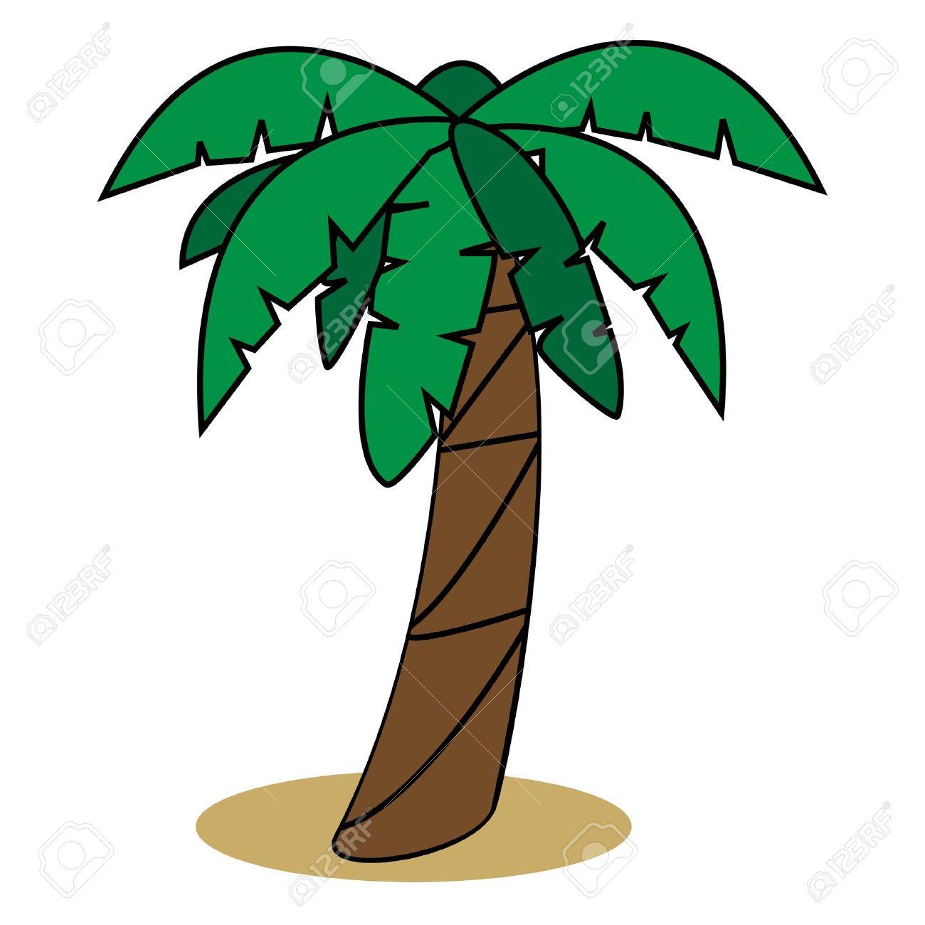 1300x1300 Palm Tree Cartoon Drawing Graphic Illustration Of Palm Tree