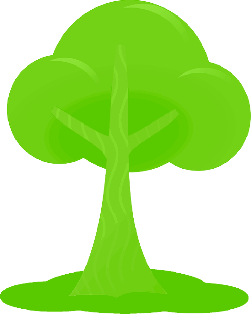 800x998 Simple, Outline, Drawing, Tree, Cartoon, Free, Peach