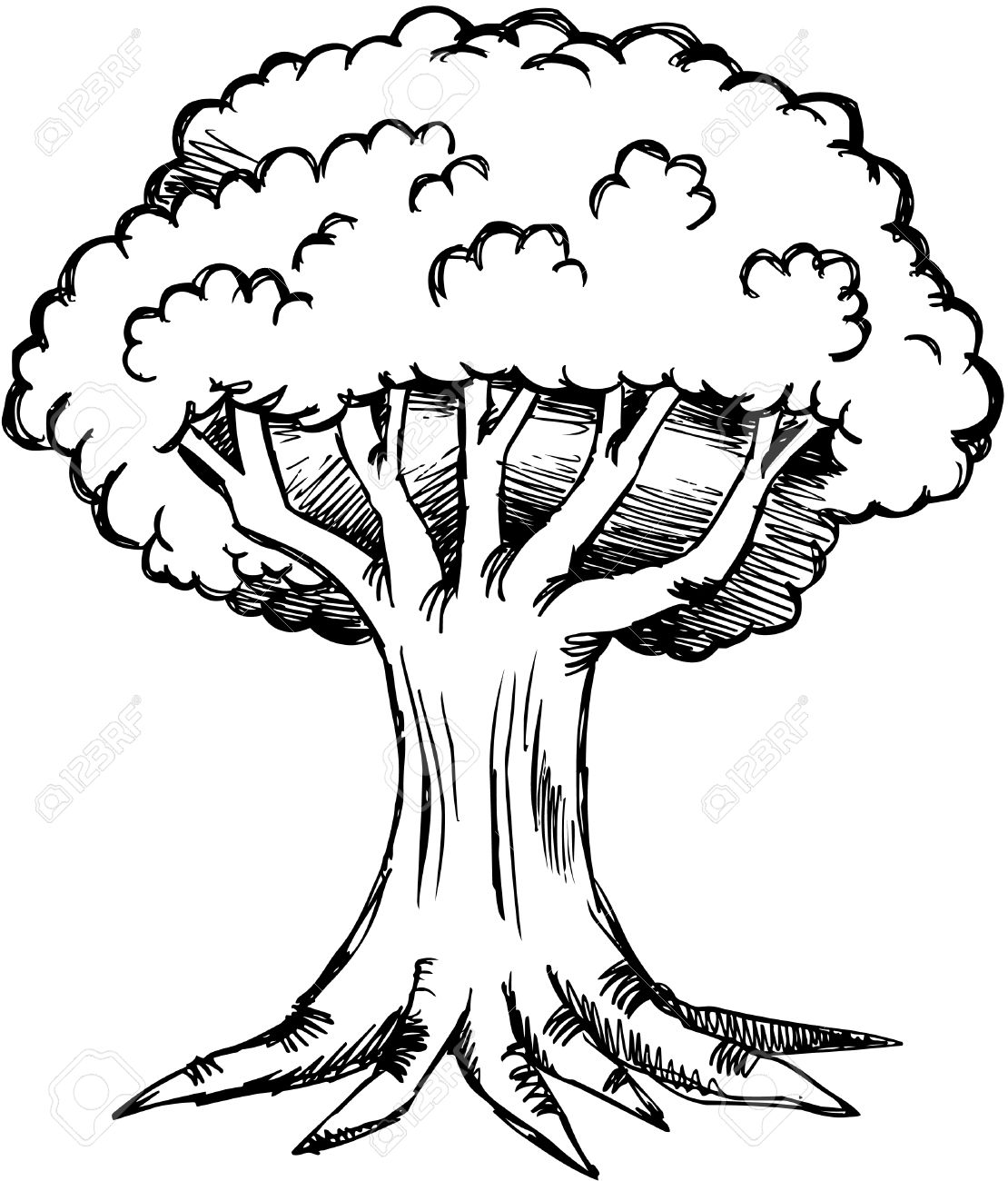 1110x1300 Tree Cartoon Black And White Collection (58+)