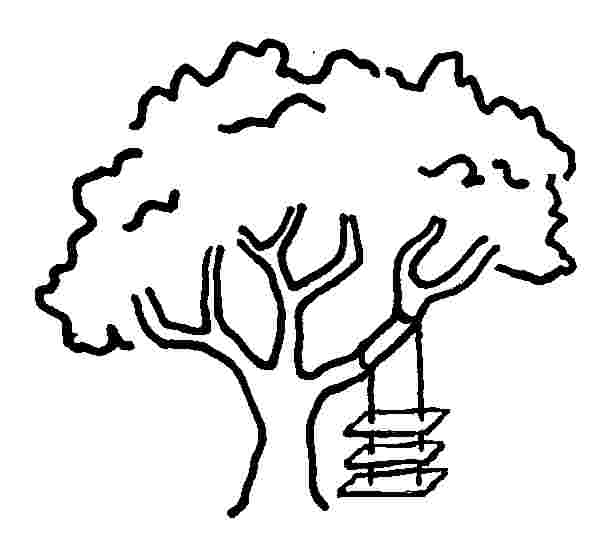 605x540 Tree Cartoon Drawing