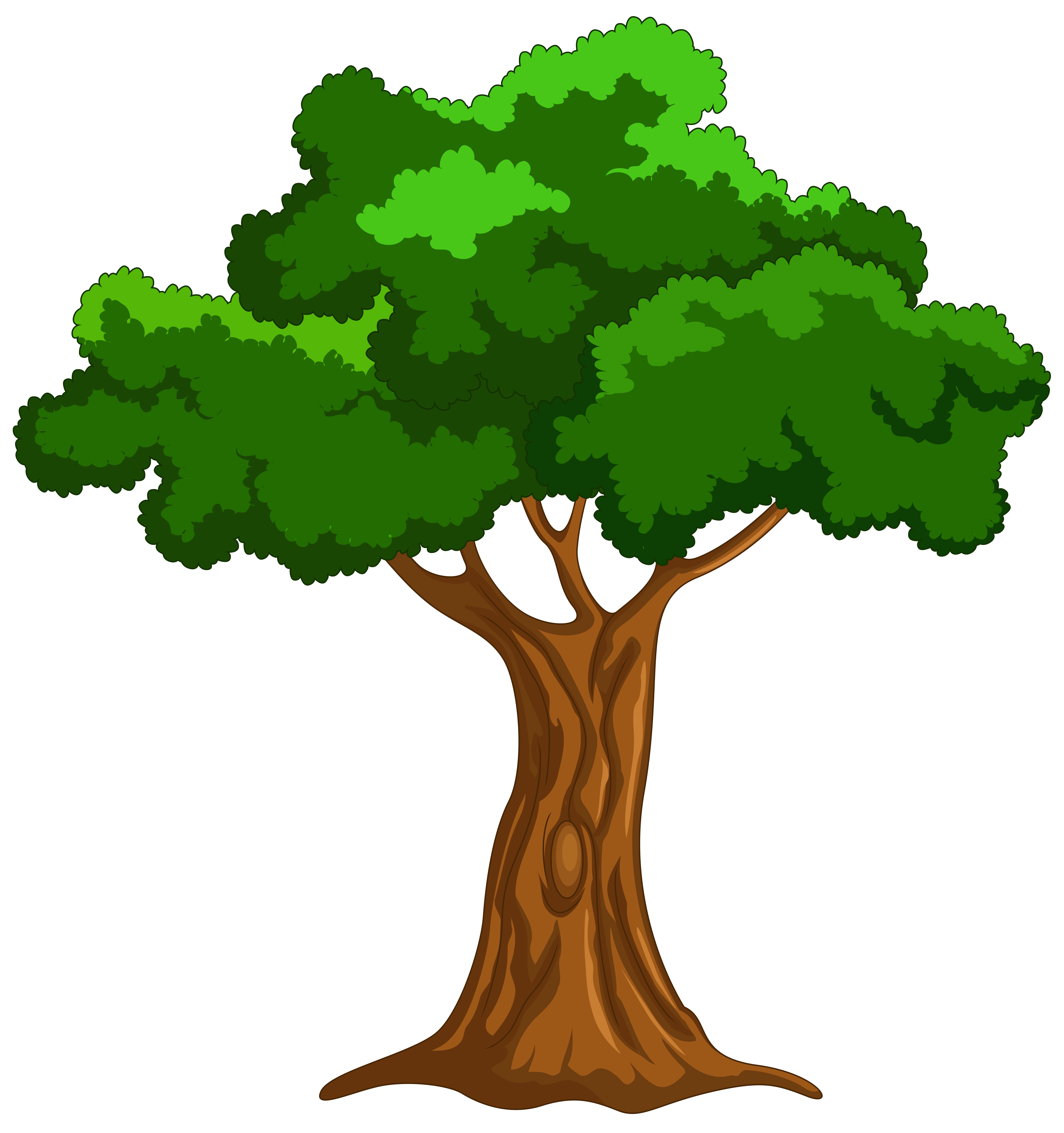 4810x5122 Cartoon Tree Png Clip Art