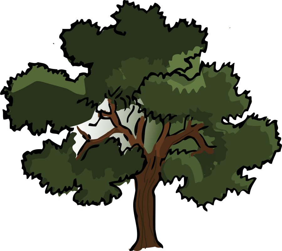 900x801 Dead Tree Cartoon Free Download Clip Art