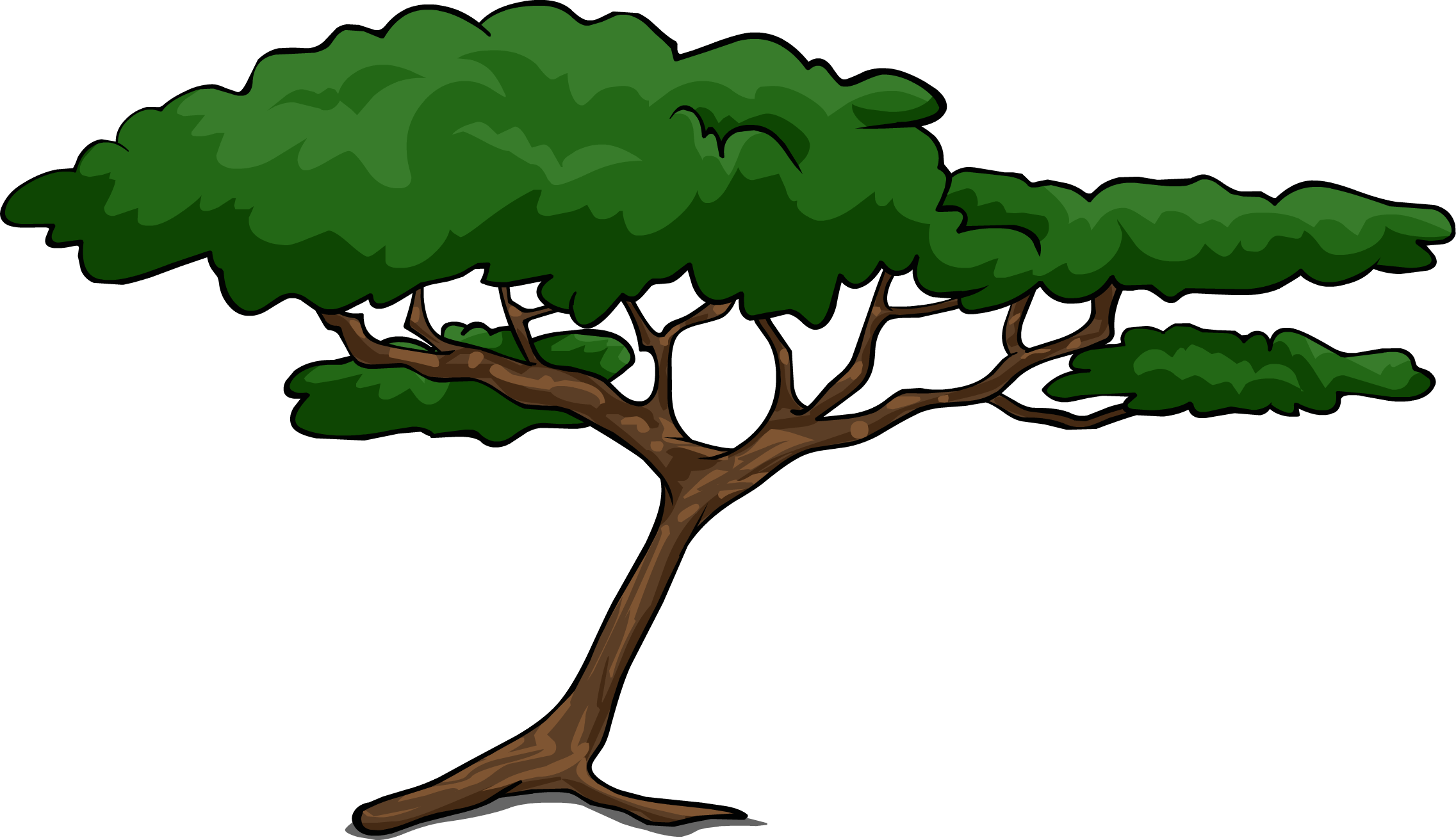 2273x1312 Jungle Tree Clipart