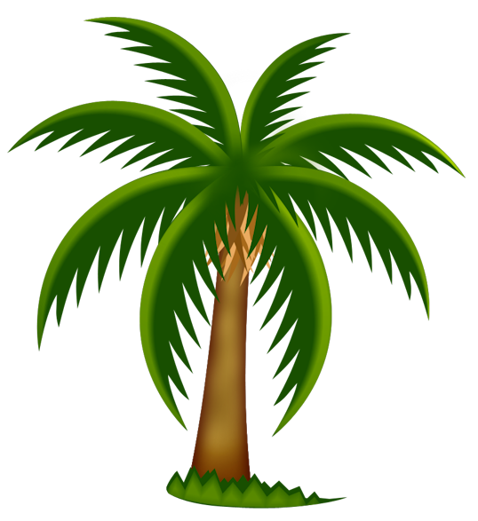 538x587 Palm Tree Cartoon Clip Art Png