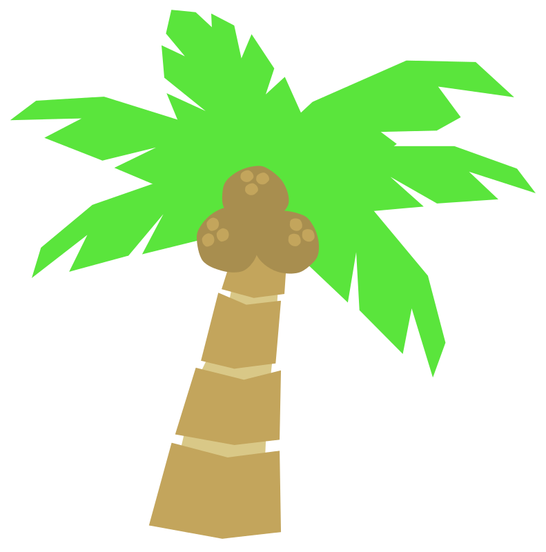 791x800 Cartoon Coconut Tree Clipart