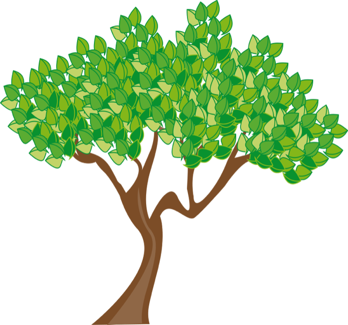 700x655 Free Tree Clipart