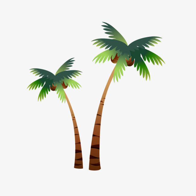 650x651 Cartoon Coconut Trees, Coconut Tree, Cartoon Png Image For Free
