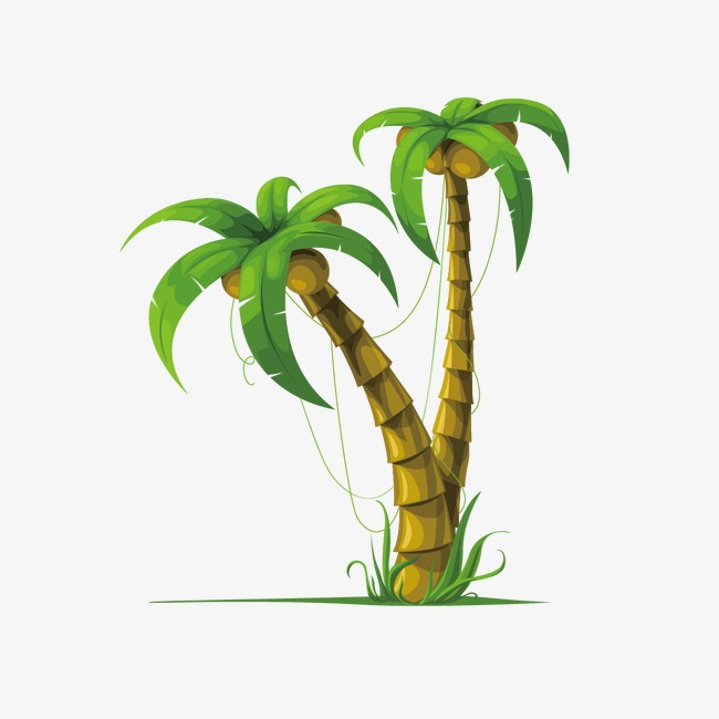 650x650 Coconut Tree, Cartoon Coconut Trees, Cartoon Png And Vector