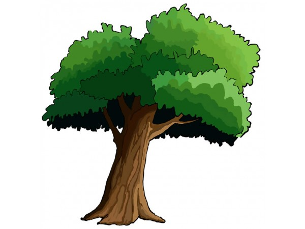 600x450 Cartoon Trees
