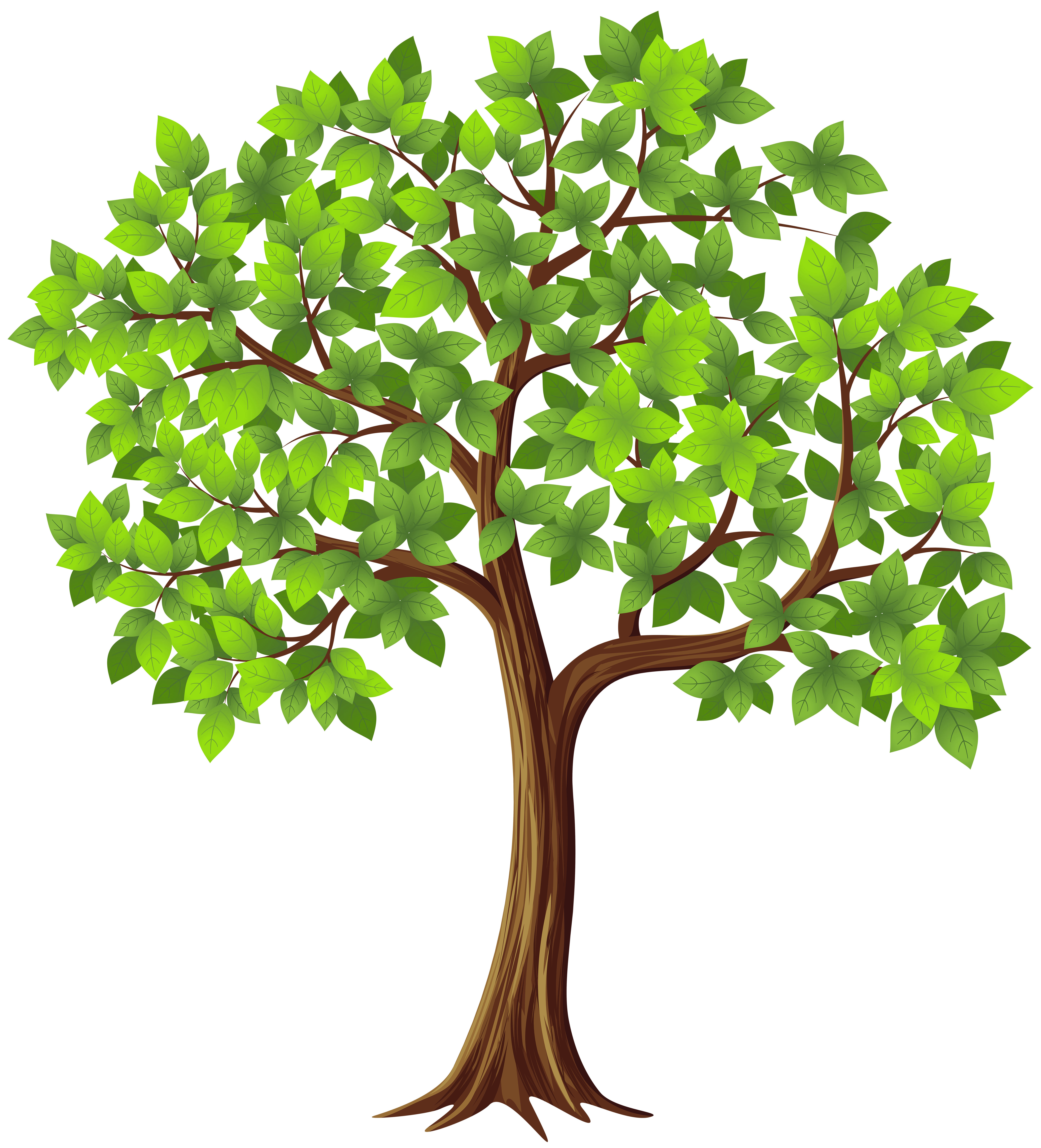 5440x6000 Edit And Free Download Tree Png Transparent Clip Art Image