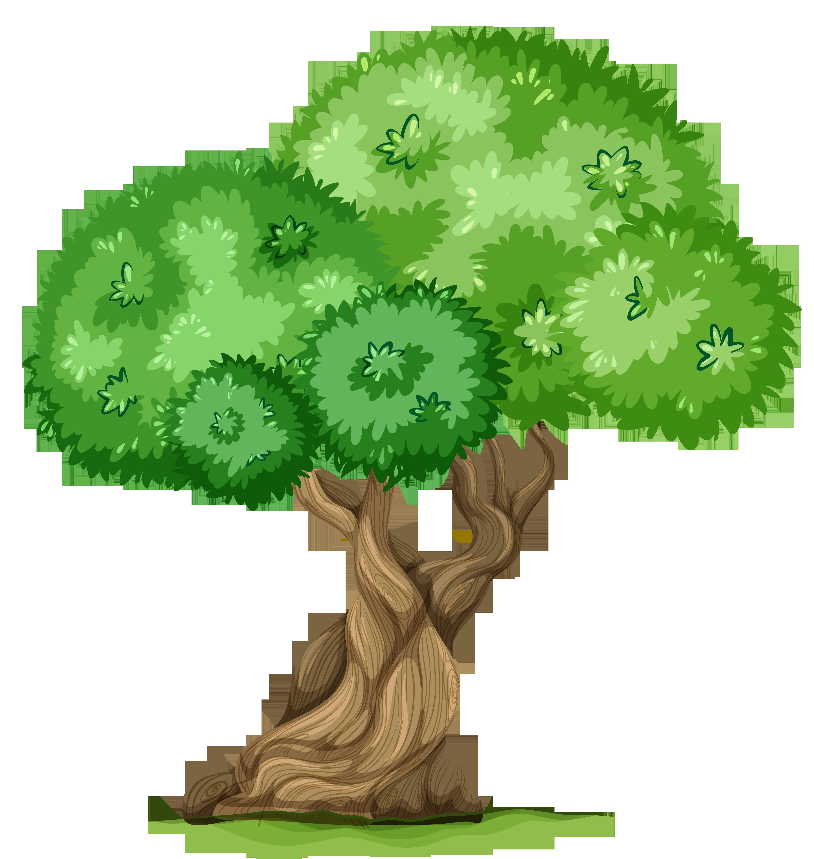 4862x5132 Top 88 Trees Clip Art