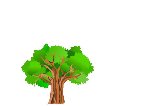 600x404 Tree Clip Art
