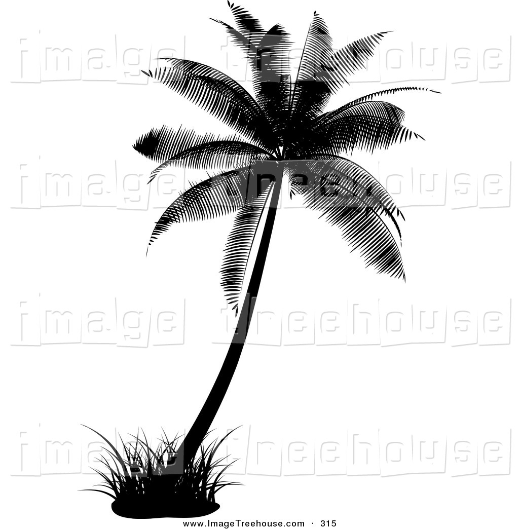 1024x1044 tree by the water clipart black and white