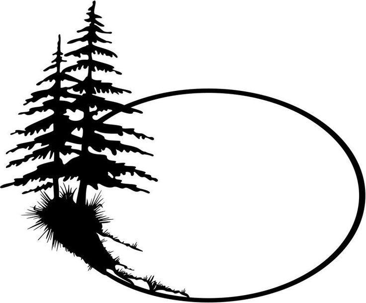 736x610 Fir Tree Clipart Black And White