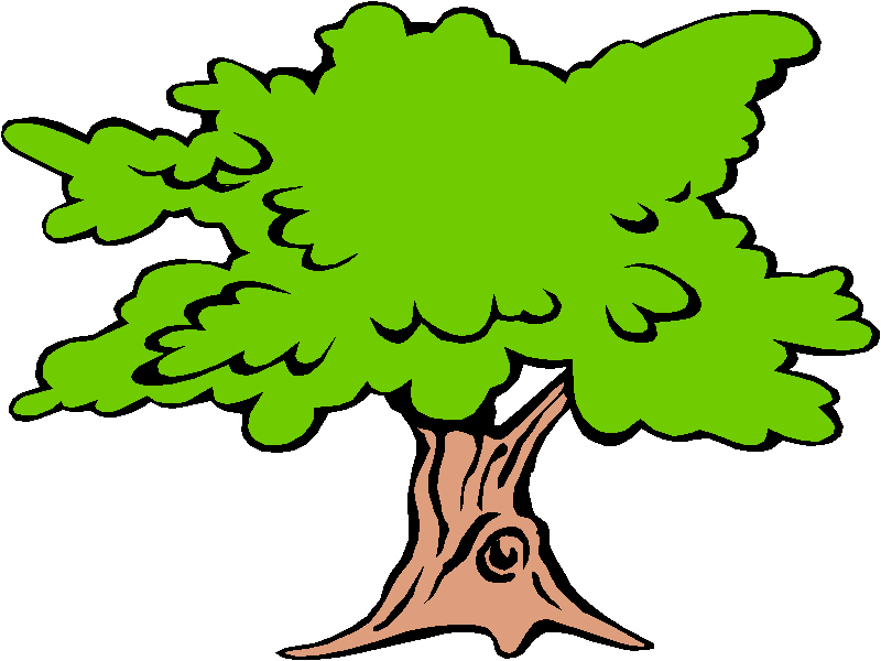 800x600 Tree Clip Art Black And White Free Clipart