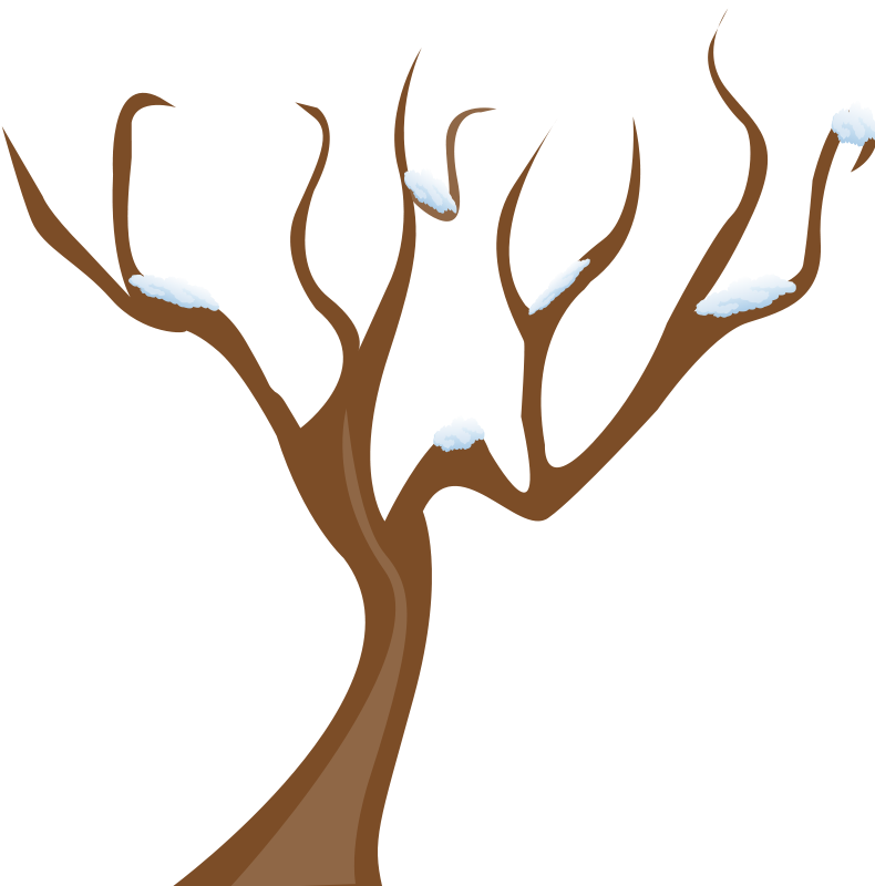 790x800 Free Winter Tree Clip Art