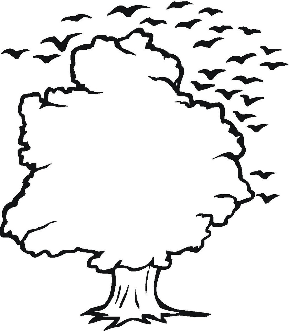1000x1140 Tree Outline Clip Art Many Interesting Cliparts