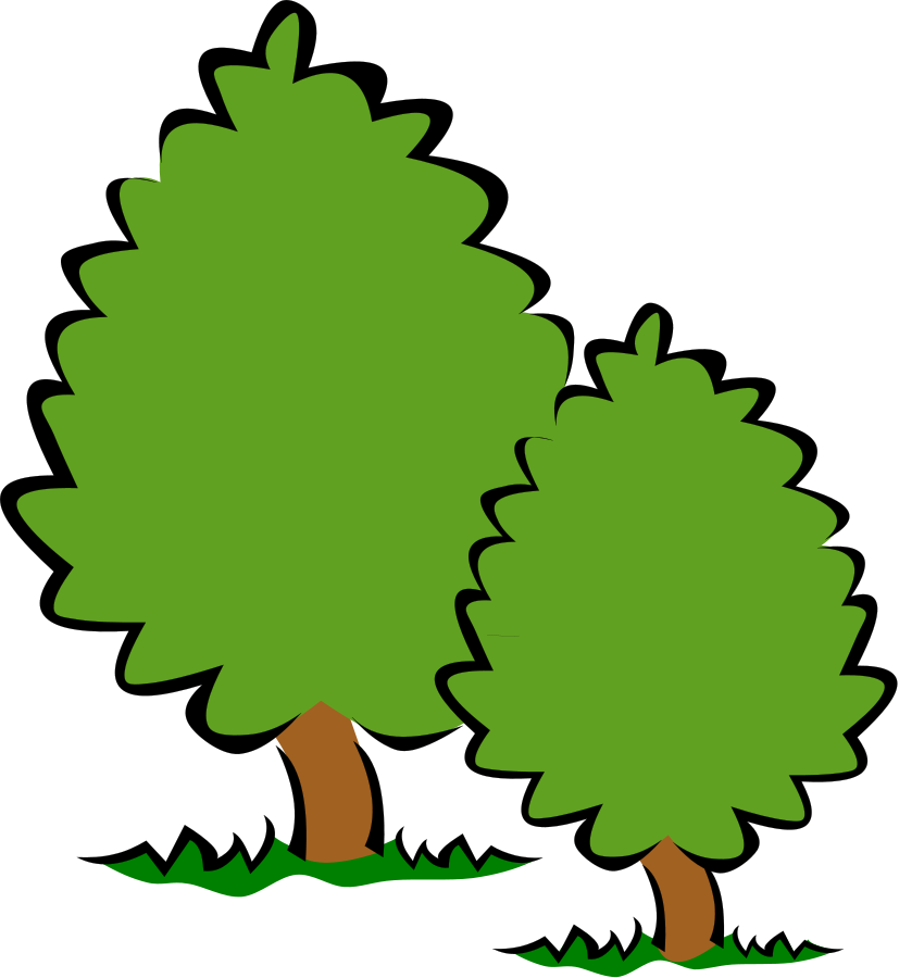 827x900 Soft Trees Png Clip Arts For Web