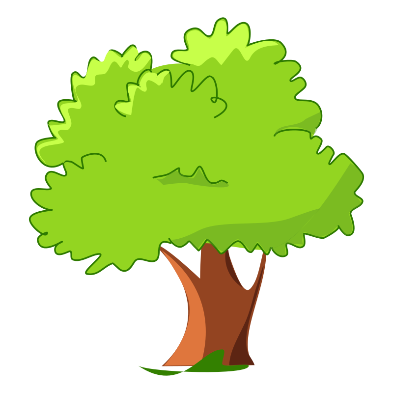 800x800 Tree Free To Use Clipart
