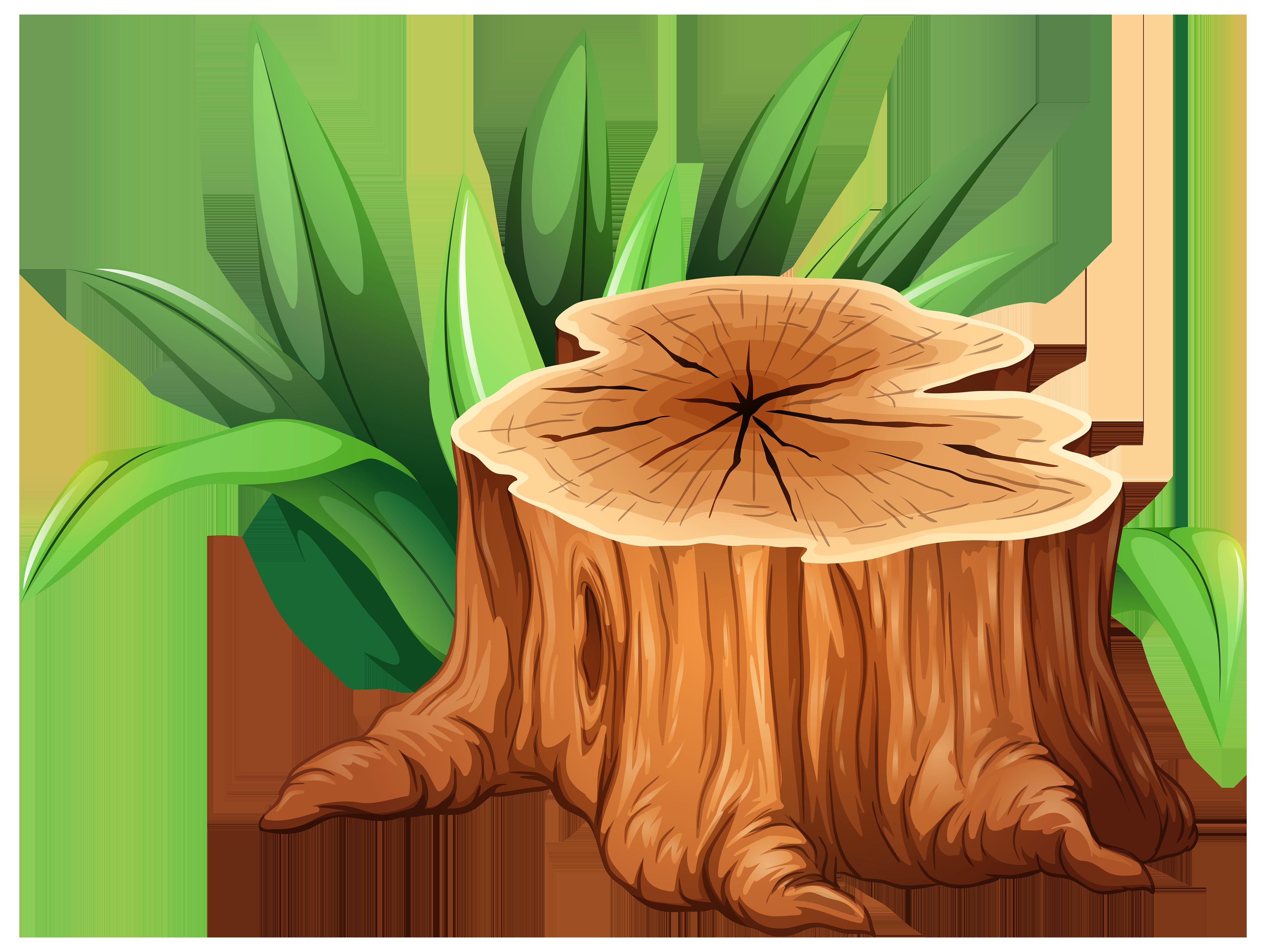 4000x3009 Tree Trunk Tree Stump Clipart