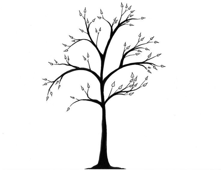Tree drawing outline free download best tree drawing for Best tree drawing