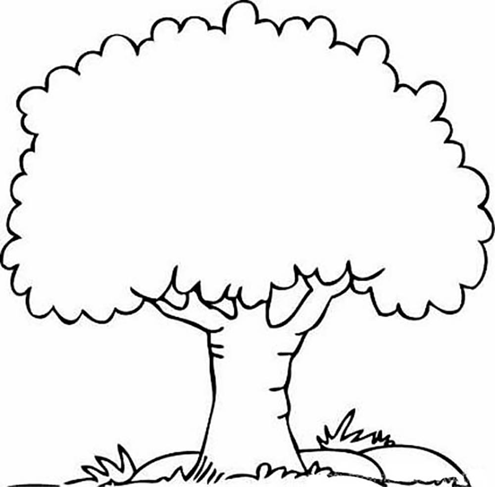 tree outline coloring page