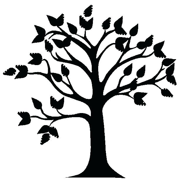 619x608 Tree Outline Drawing Tagged Tree Drawing Ideas Pine Tree Outline