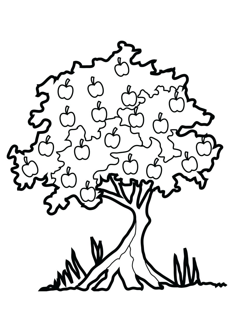 Fancy Tree Frog Coloring Pages Image - Printable Coloring Pages ...