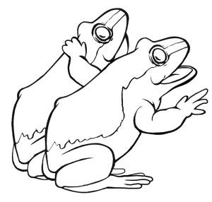 Tree Frog Outline | Free download on ClipArtMag