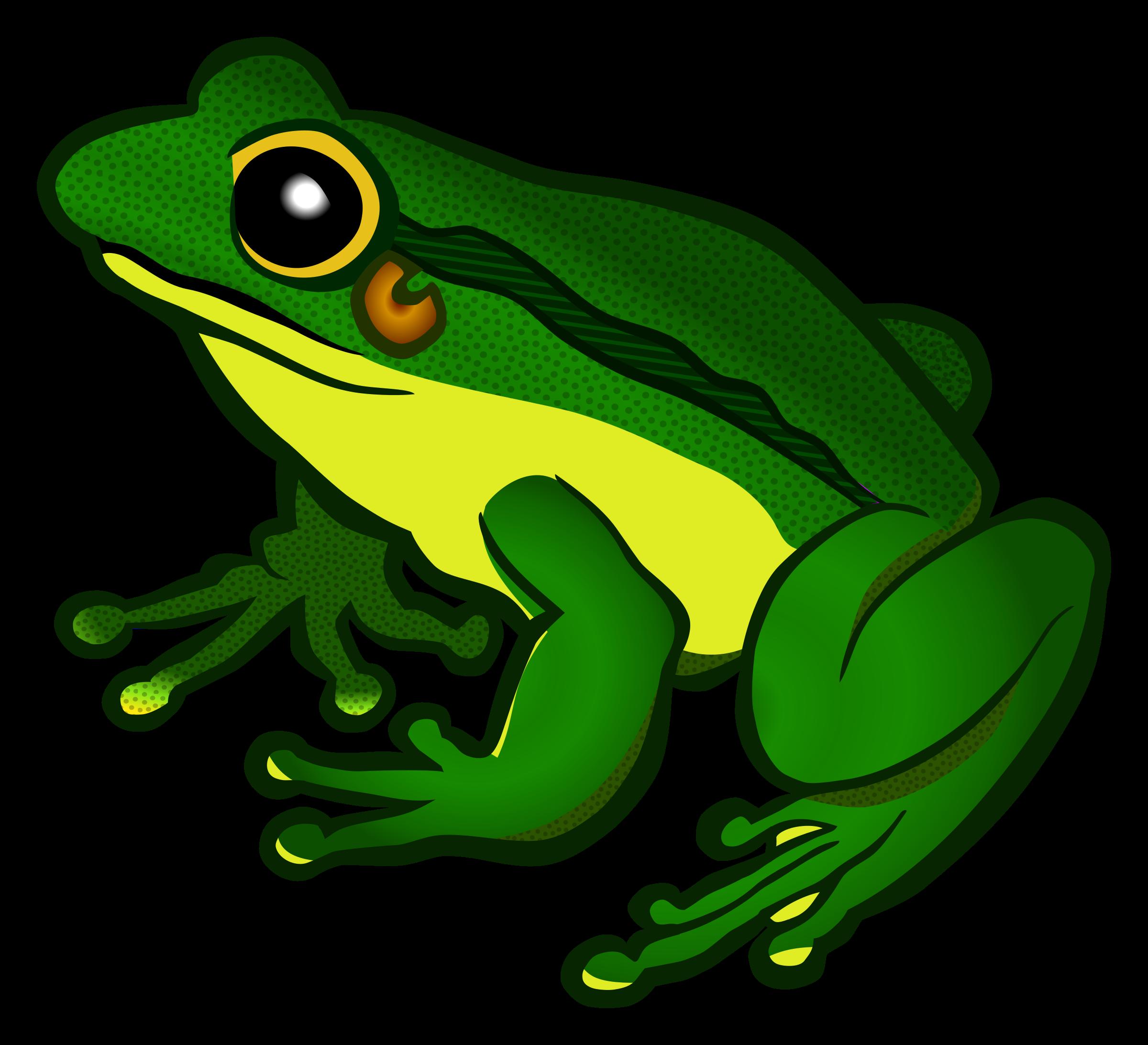2400x2185 Frog Png Images Transparent Free Download