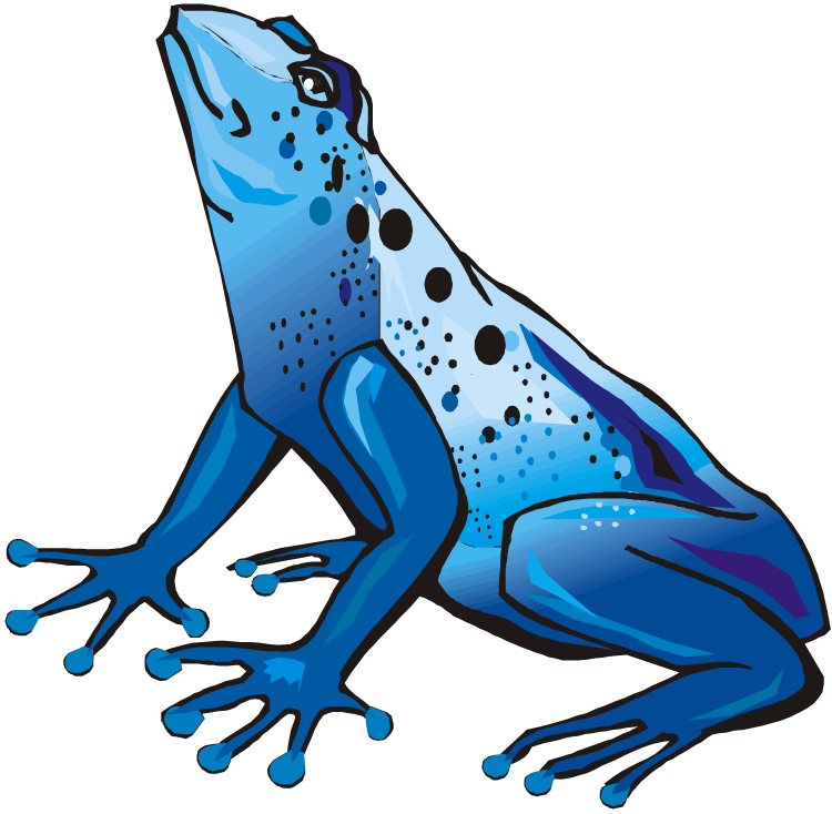 750x734 Poison Dart Frog Clipart Tree Frog Clipart