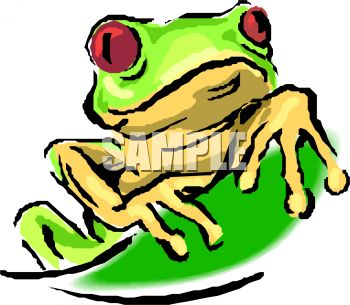 350x305 Royalty Free Clipart Image Little Red Eyed Tree Frog Peaking Over