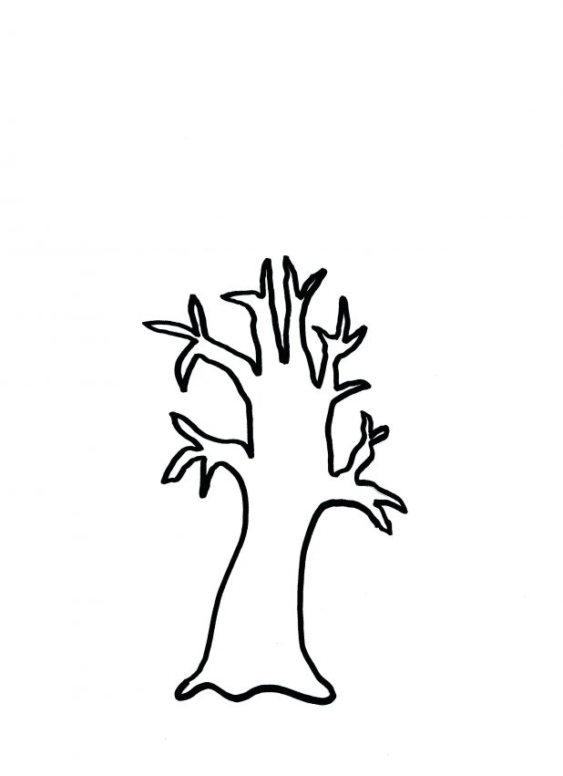 618x851 Coloring Excellent Tree Trunk Outline. Simple Tree Trunk Outline