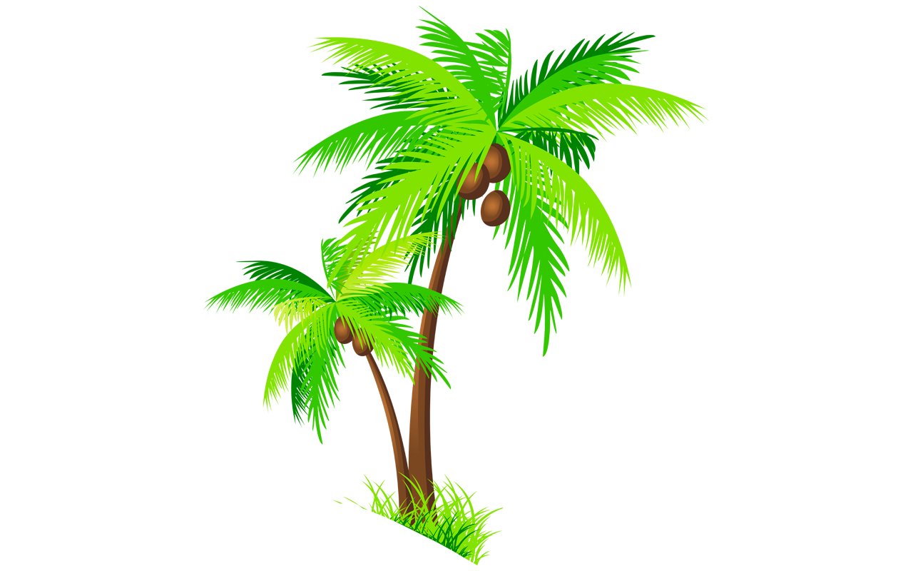 1280x800 Coconut Tree Clipart