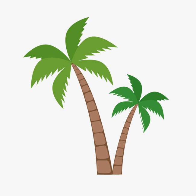 650x651 Green Coconut Trees, Green, Coconut Tree, Vector Png And Vector
