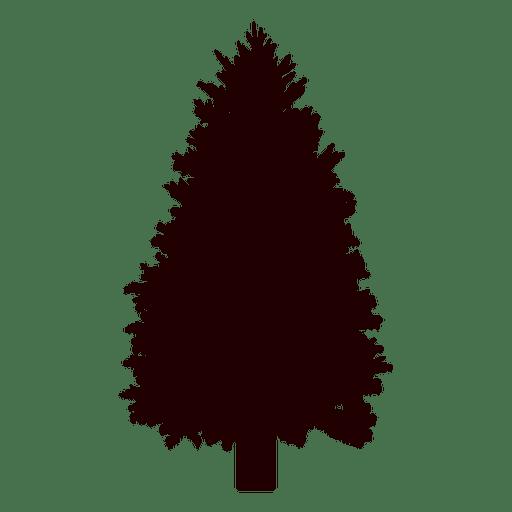 512x512 Spruce Tree Vector