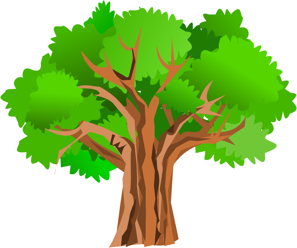 999x834 Tree Png Vector Transparent Tree Vector.png Images. Pluspng