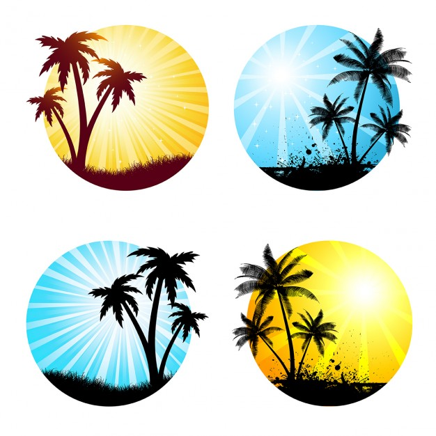 626x626 Various Summer Scenes With Palm Trees Vector Free Download