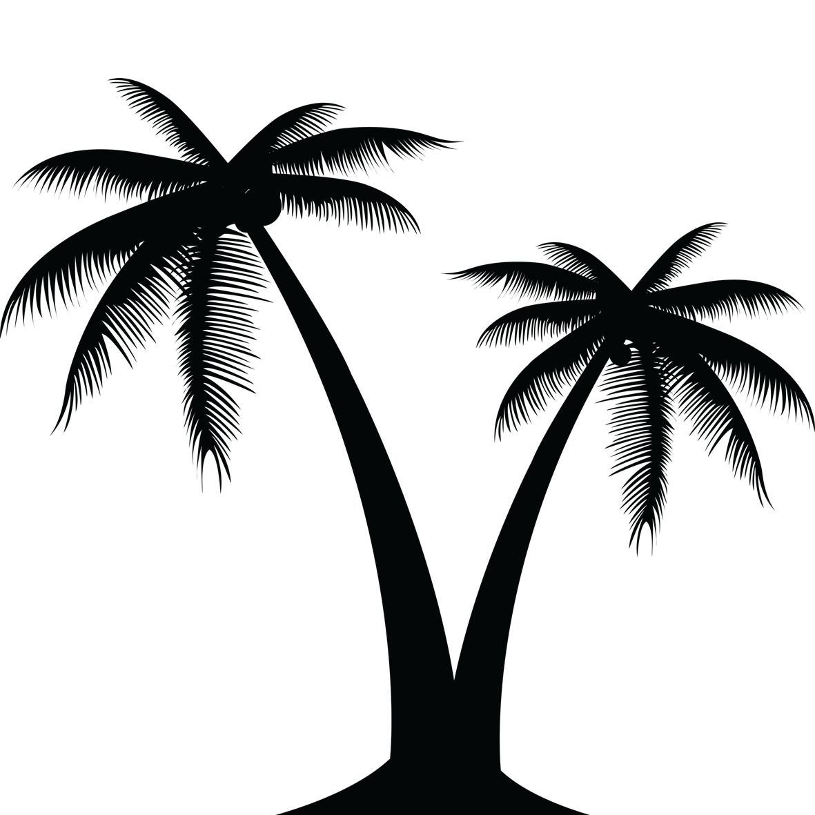 1181x1181 Palm Tree Clipart (21) Vector Eps Free Download, Logo, Icons, Clipart