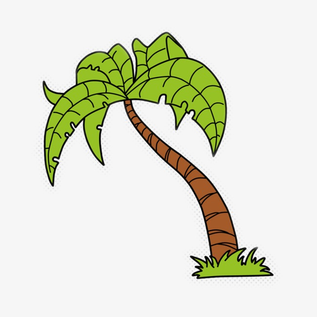 650x650 Coconut Tree Vector, Coconut Tree, Great, Sandy Beach Png Image