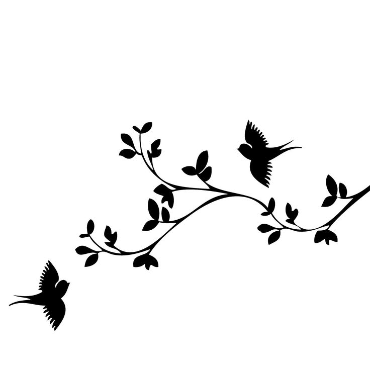 736x736 Bird Silhouette Clip Art Many Interesting Cliparts