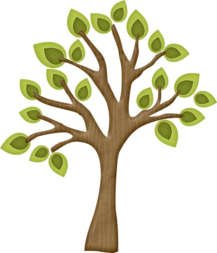 736x859 Clipart Of Tree With Branches 101 Clip Art