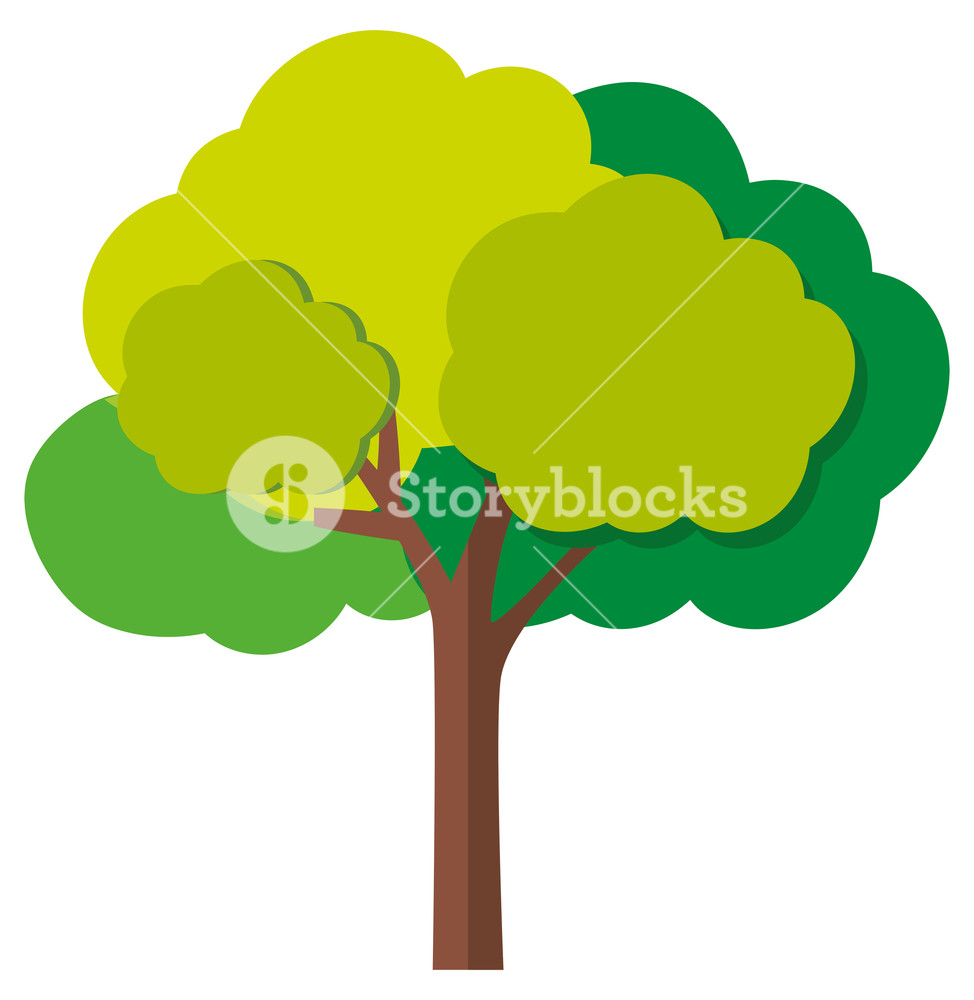 974x1000 Green Tree With Branches Illustration Royalty Free Stock Image