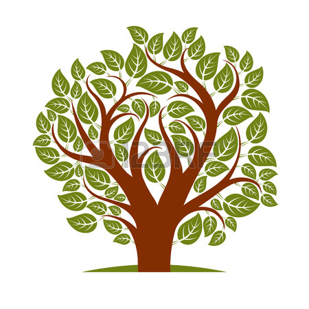 450x450 Vector Illustration Of Tree With Leaves And Branches In The Shape